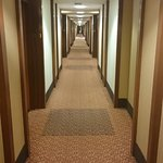 Hotelflur 11. Etage