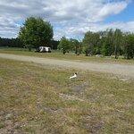 Photo of First Camp Umea