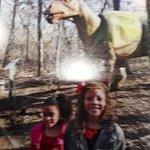 Foto di Heard Natural Science Museum & Wildlife Sanctuary