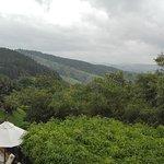 Photo de Amaya Hills