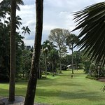 Foto di The Halia at Singapore Botanic Gardens