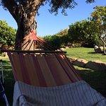 B&B Soleesale e Appartamenti per Vacanze Foto