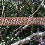 Jungle Beach Foto