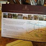 Cafe information