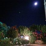 호텔 플레사스 팰리스 사진