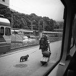 The Bergen Railway Foto