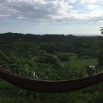 My favourite place to relax - a hammock outside my room overlooking the jungle and the ocean!