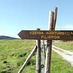 Photo of Agriturismo Filippon