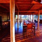 Oliver's Camp, Asilia Africa Foto