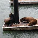 Photo de Fisherman's Wharf