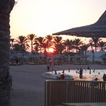 Photo de The Desert Rose Resort