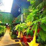 Chalet Kilauea Foto