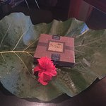 Another gift from Chris with a Jurassic sized leaf!