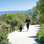 Bay Walking Trail