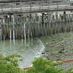 Silver Cloud Inn Tacoma - Waterfront Foto