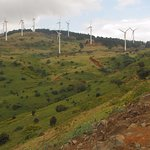 Even if you have seen wind farms a zillion times... they are still spectacular to look at