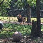 Photo de Cape May County Park & Zoo