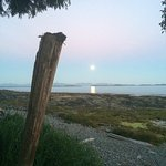 Foto de Mussel Beach Campground