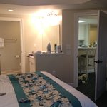 Master bedroom/bathroom