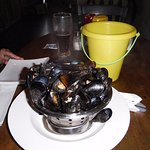 mussels and bucket for shells