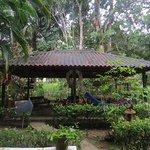 Ivan's Bed & Breakfast Birding Lodge Foto