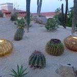Sandos Finisterra Los Cabos Foto