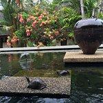 Tanjong Jara Resort Foto