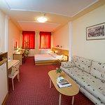 Foto di Hotel Platan