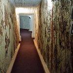 Underground Motel Foto