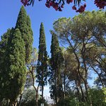 Foto di Villa Silj