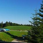 Vue sur les pelouses et la forêt, de la salle à manger panoramique
