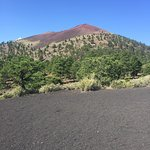 Enjoyed walking through lava rocks and black pumice on the Lava Flow Trail. Great view from Cind