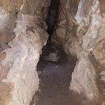 Foto di Horne Lake Caves Provincial Park