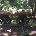 old logging equipment along the trail