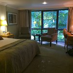 Wagtail executive room