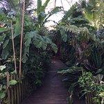 Secret Garden Iguazu B&B Foto