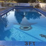 Perfect for lap swimming, fun for kids
