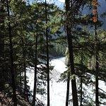 溪底很多大小石,使溪水更加泡泡的