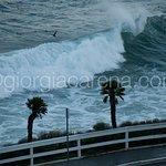 Foto de La Jolla Cove Suites