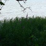 Photo de Beaver Lake Nature Center