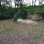 Photo de The Lost Gardens of Heligan