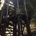 Escada para entrar no cenote e também trampolim