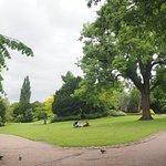 Photo de Museum Gardens