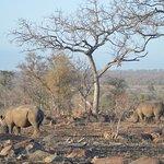 Gambar Umkumbe Safari Lodge