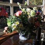 Foto de Olive Branch Guest House