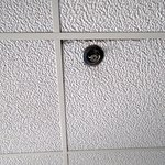 Mold in ceiling tiles
