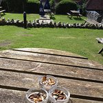 Soggy fag ends on the garden tables of the Waggon and Horses 26 Aug 2016