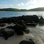Foto de Culebra Beach Villas