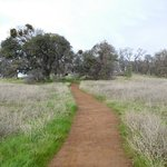 Folsom Lake State Recreation Area Foto