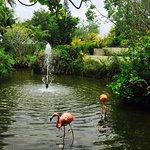 Paradisus Palma Real Golf & Spa Resort Foto